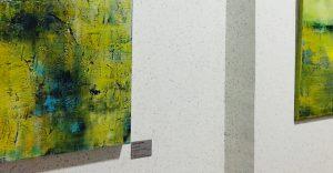 Galerie-image